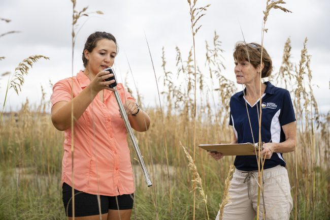 Matzke and Leege collect data for her sand dune restoration project.